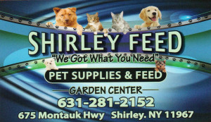 Shirley Feed